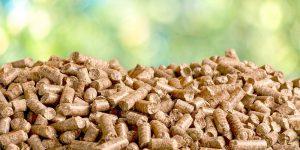 Holzpellets bleiben im August weiterhin günstig